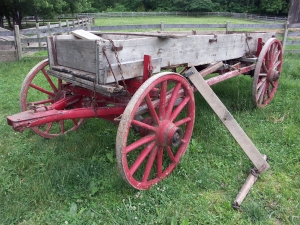 Old Wagon in Pasture